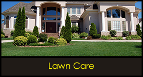 Lawn Care - Sod for Sale